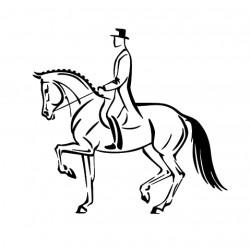 cavalier de dressage 2