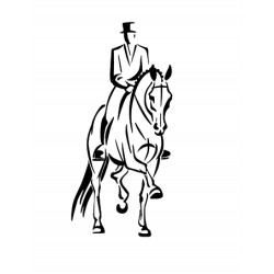 cavalier de dressage 3