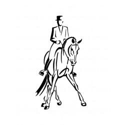 cavalier de dressage 4