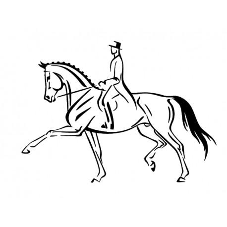 cavalier de dressage 5