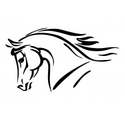portrait cheval 3