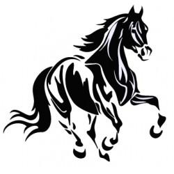 cheval au galop 3