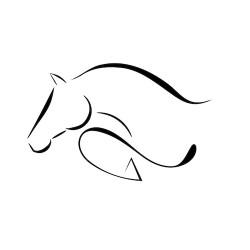 cheval CSO épuré