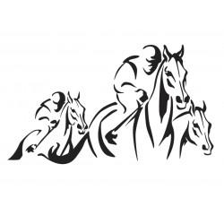 chevaux de course 5