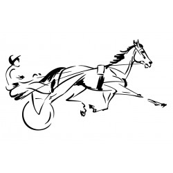 chevaux de course 7