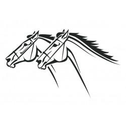 chevaux de course 10